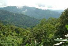Philippinen_Berge_1